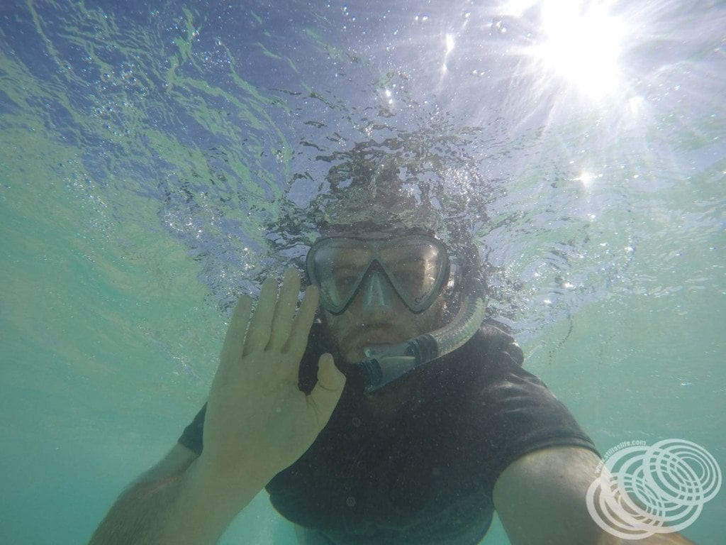 Matt snorkelling at Ningaloo National Park