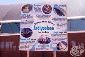 Ardiyaloon Hatchery