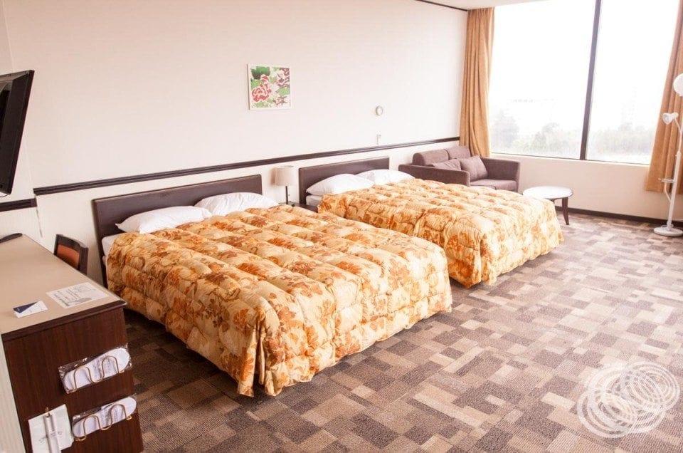 Toyoko Inn Kuko (Tokyo Narita Airport) Deluxe Twin Room 11027 Review (Non-Smoking)