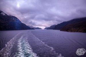 Cruising in Dusky Sound