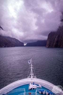 Golden Princess on her way out of Milford Sound