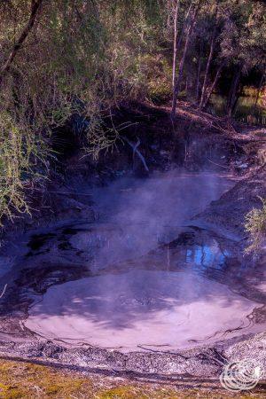 Boiling Mud at Kuirau Park Rotorua