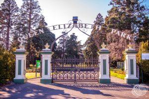 Queen Elizabeth Park - Masterton