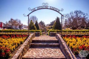 The Hosking Garden at Queen Elizabeth Park